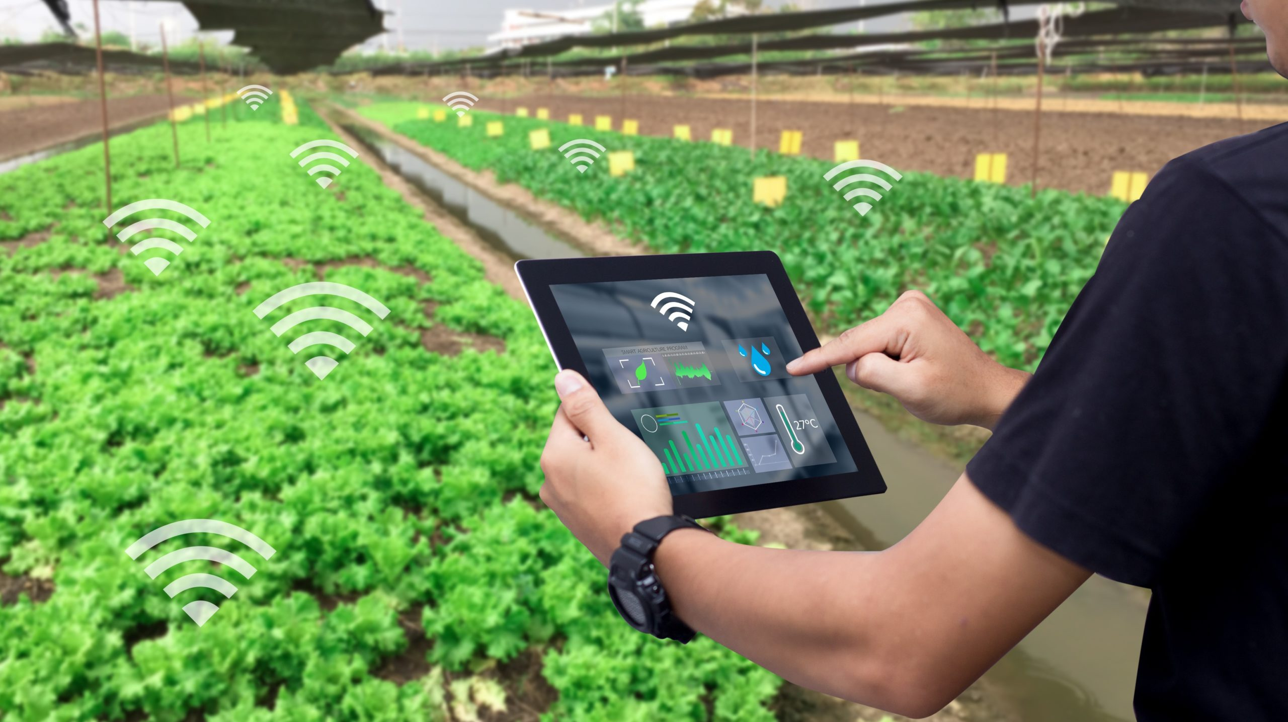 Agriculture app development company in bangalore
